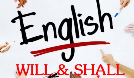Cách phân biệt, sử dụng Will và Shall trong tiếng anh